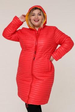 Женская весенне-осенняя куртка 18820 Красный